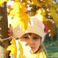 Осень :: Polina B Visual artist