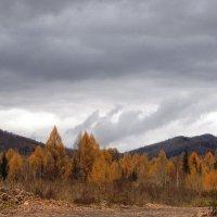 Октябрь на перевале :: Ольга Иргит
