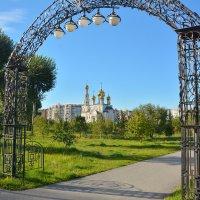 Арка в мир :: юрий Амосов