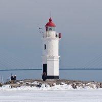 Владивосток,Токаревский Маяк,мост на остров Русский :: Дмитрий Касай
