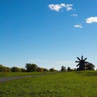 Пейзаж с мельницей. :: Лазарева Оксана