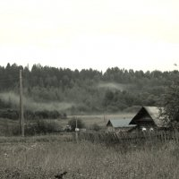 Утренний туман над деревней :: Любовь Чащухина