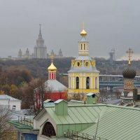 Москва. Воробьевы горы :: Михаил Танин