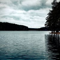 Black river :: Марина Денисова