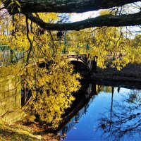 Рядом с милым мостиком... :: Sergey Gordoff