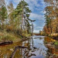 Осенний мотив.. :: АЛЕКСАНДР СУВОРОВ