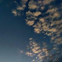 Вечерняя прогулка :: Ефим Журбин