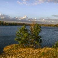 Осенний водоем :: Сергей Цветков