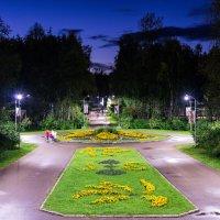 Вечер в ухтинском парке... :: Николай Зиновьев