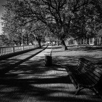 Осень :: Pavel Bamboleo