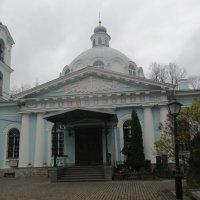 Ноябрь 2020 :: Митя Дмитрий Митя