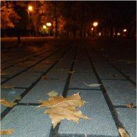 В парке ночью :: °•●Елена●•° ♀