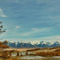 с видом на Северо-Чуйский хребет :: Николай Мальцев