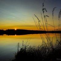 Закат над озером :: Максим Мокрецов