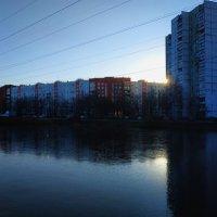 Пруд почти встал (толщина льда местами в сантиметр) :: Андрей Лукьянов