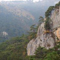 Ущелье трех гор. Крым :: Сергей Яворский