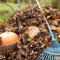 Осень :: Надежда К