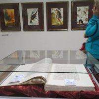 Библия Сальвадор Дали :: Марина Кушнарева