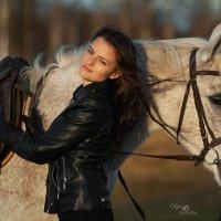 Холодный ноябрь :: Ольга Семина