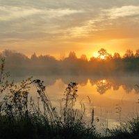 Восход :: Екатерина Липатова