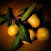 мандарины :: IREN jonina