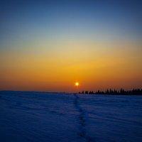 «Навстречу утреннему солнцу» :: Александр Гладких