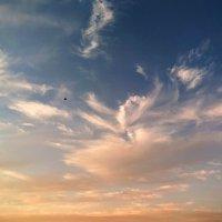 Вечернее небо в пустыне :: Ефим Журбин