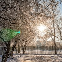 Мороз и солнце. Всё по схеме. :: Дмитрий Костоусов