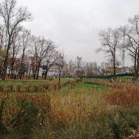 Вот так выглядит зима в парке Наталка... :: Тамара Бедай