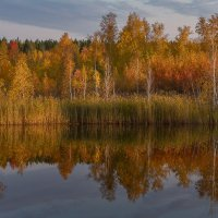 Вечер золотой осени. :: Pavel Vasilev