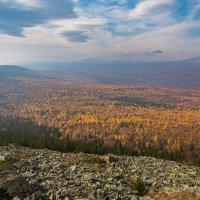 Золотая осень в Уральских горах. :: Pavel Vasilev