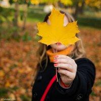 Осень :: Роман Алексеев