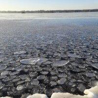 на озере :: Sabina