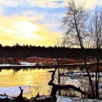 Зимний день на реке Пирита :: Aida10