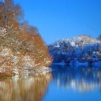 Зима :: Сергей *