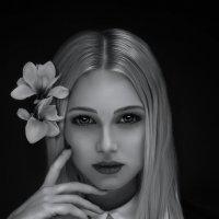 """""""Магнолия"""" :: Людмила Иванова"""