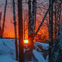 зимний вечер :: Аркан Арканович