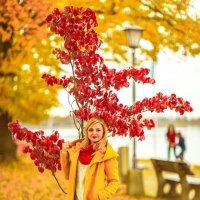 Herbst :: Marina Reim