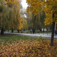 Осень в  Гагаринском парке :: Валентин Семчишин
