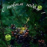 Поздравляю все с праздником! Счастья, красок,волшебства,мира света и тепла! :: Виктор