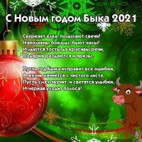 С Новым годом! :: Виктор Шандыбин