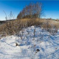 Зима на маленькой планете :: Влад Чуев