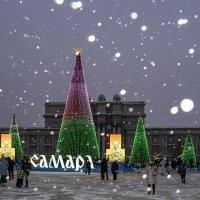 Новогодние ёлочки на площади имени Куйбышева... :: Наталья Меркулова