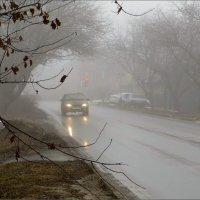 Туман и морось на дороге :: Татьяна Смоляниченко