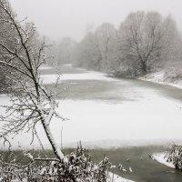 Озеро зимой :: оксана