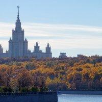 Осень на Воробьевых горах :: Михаил Танин