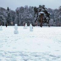 Снеговиковая поляна :: Alex Sash