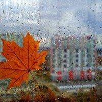 Осенний этюд :: LEO .