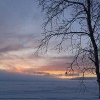 В зимнем сне :: Ольга