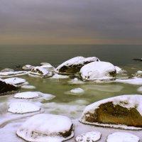 Зимнее безмолвие :: Marina Pavlova